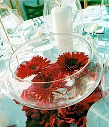 Wholesale Wedding Flower Options, DIY Centerpiece Rentals CLICK HERE on water vase centerpieces, shoe vase centerpieces, glass beads for centerpieces, table decorations centerpieces, small vase centerpieces, trumpet vase centerpieces, vase fillers for centerpieces, christmas centerpieces,